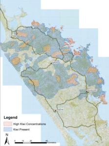 brown-kiwi-map