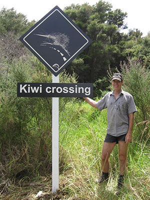 kiwi resources