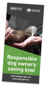 Kiwi and Dogs Brochure