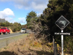 Backyard Kiwi Road sign