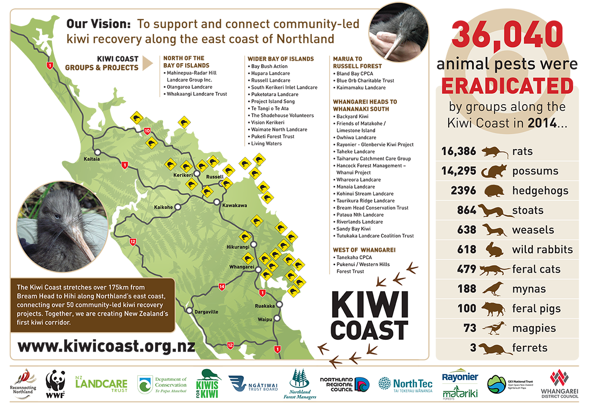 View and download Kiwi Hui Poster as a pdf file