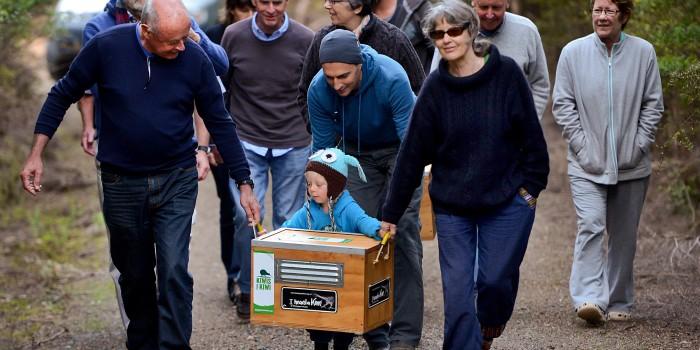 Kiwi Coast Summer Events