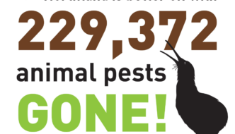 229,372 Pests Trapped on Kiwi Coast
