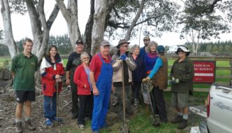 South Kerikeri Inlet Landcare Hit Two Big Milestones!