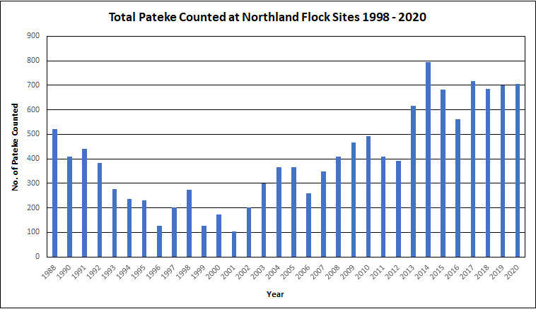 Northland Pateke Flock Count Data, 2020